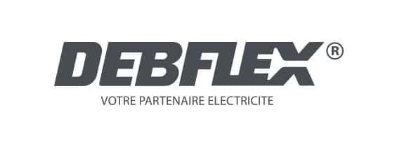 Logo Debflex
