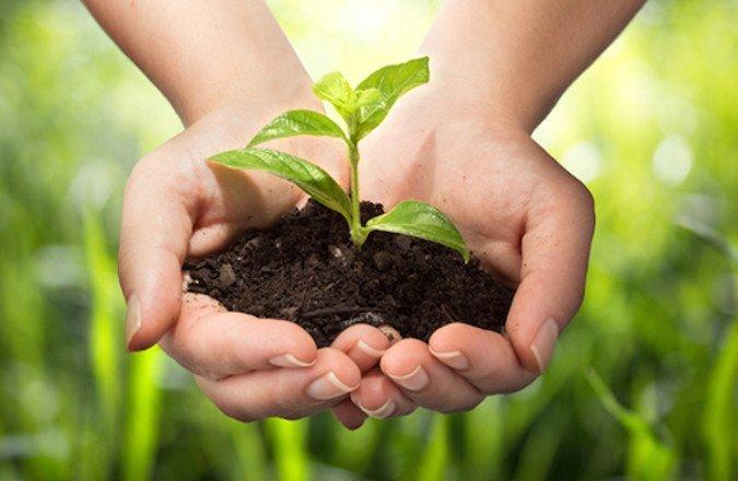 AGRI-FOOD – FORECAST & PLANNING TO ADAPT